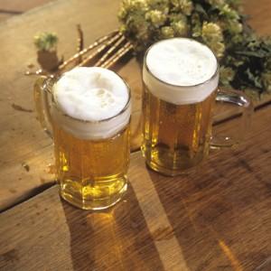 alcohol cervezas