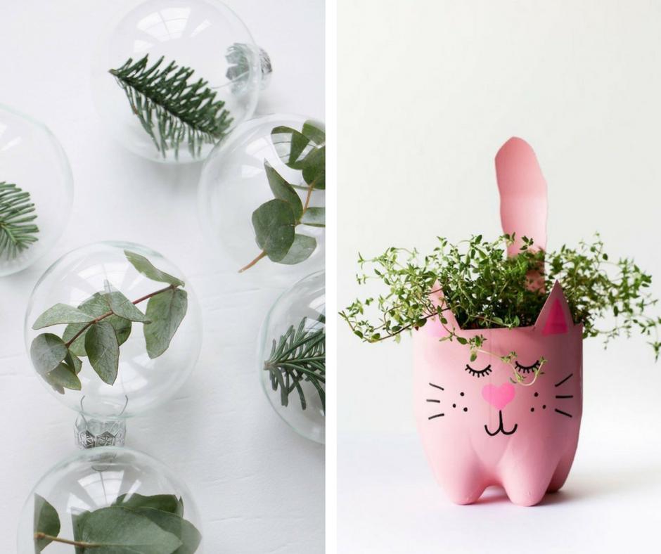 Proyectos DIY - plantas - La Tienda Home