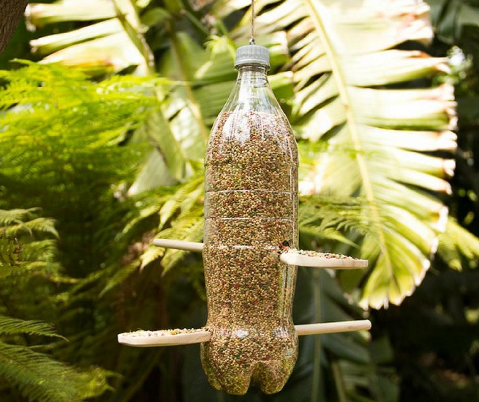 Alimentador para pájaros con botella de plástico - DIY - La Tienda Home