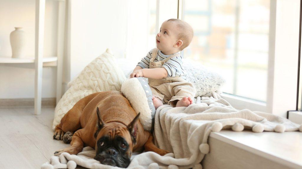 Bebé juega en un entorno seguro - La Tienda Home